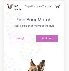 Responsive UI Prototype to find a dog